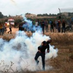Weekly Report On Israeli Human Rights Violations in the Occupied Palestinian Territory (01 – 07 June 2017)