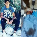 Weekly Report On Israeli Human Rights Violations in the Occupied Palestinian Territory (25- 31 January 2018)